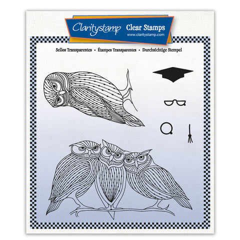 Wise Owls + MASK Unmounted Clear Stamp Set
