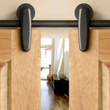 Black - Black Earnhardt Double - Barn Door Hardware Kit