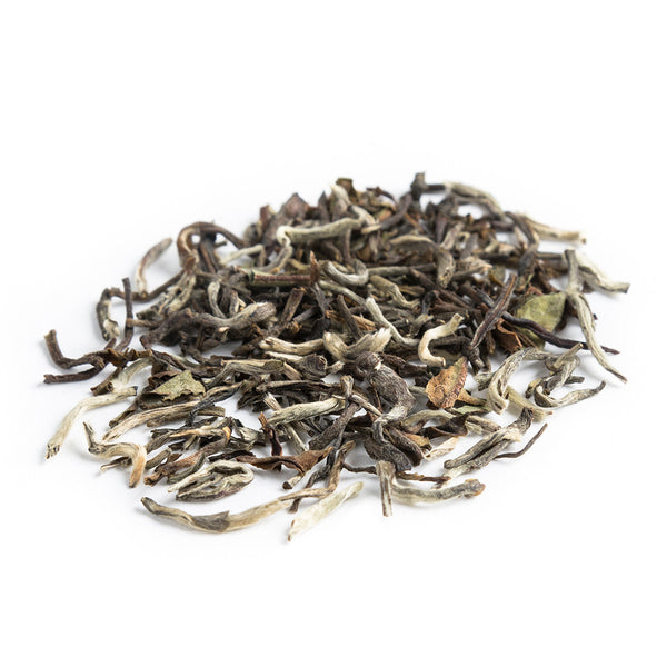 Darjeeling 1st Flush Highlands Silver Tip