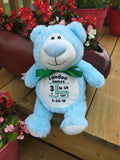 Cubbies™ Light Blue Bear Stuffie with Custom Embroidery