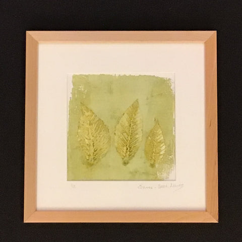 """Echoes"" Framed Botanical Beech Leaves Print, Cris Winters, Saranac Lake, NY"