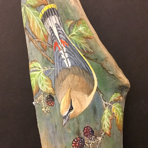 Driftwood Painting Cedar Waxwing and Blackberries