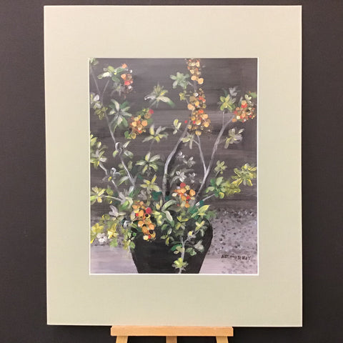 """Plant at Dark"" Matted Print from Original, by A.J. Murray, Potsdam, NY"