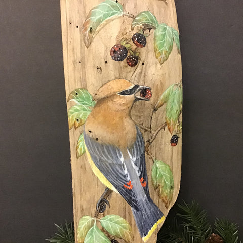 Driftwood Painting Cedar Waxwing and Blackberries, Susan Robinson