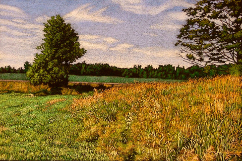 """Hayfield"" Print, William Newman, Rensselaer Falls, NY"