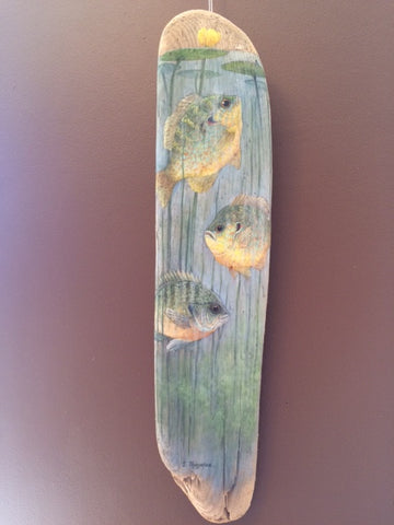Driftwood Painting Blue-Gill Sunfish
