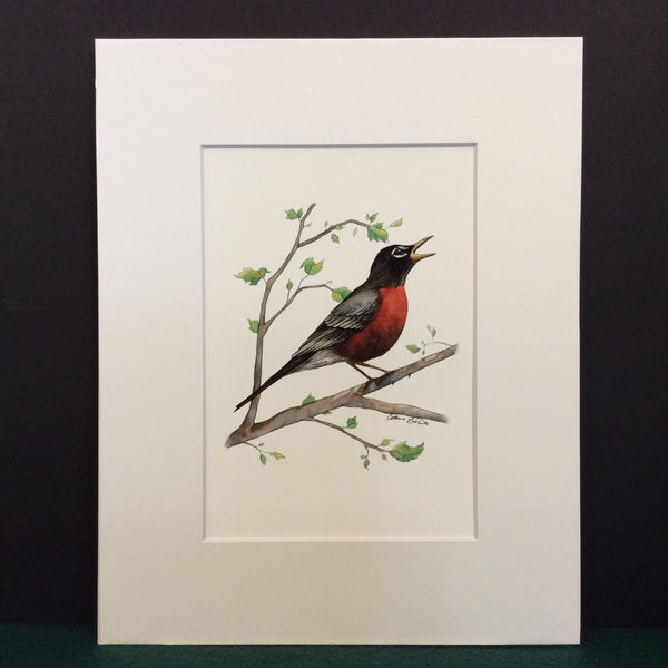"""Four Seasons"" Bird Prints and Notecards"