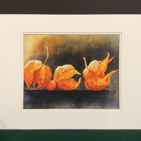 """Chinese Lantern"", Signed Watercolor Print, Michiko Taylor, Potsdam, NY"
