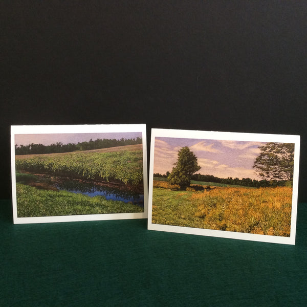 Assorted Art Notecards, William Newman, Rensselaer Falls, NY