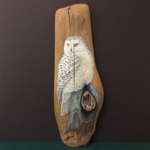 Driftwood Painting Snowy Owl