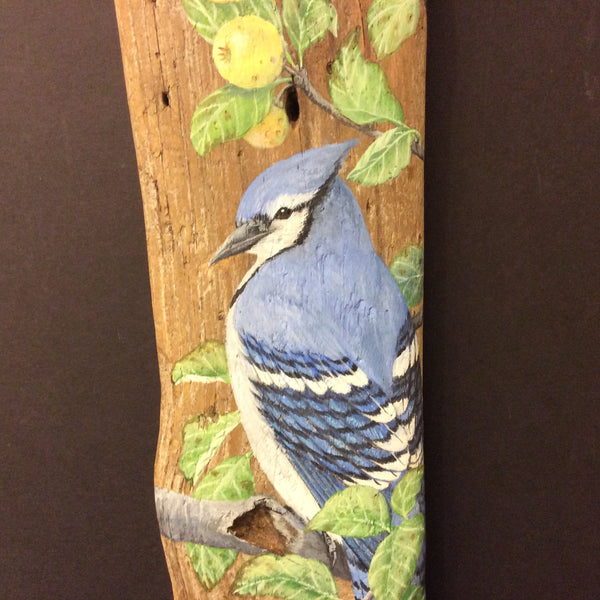 "Driftwood Painting Blue Jay and Apples, Susan Robinson, Folkstore ""Spotlight"" Artist"