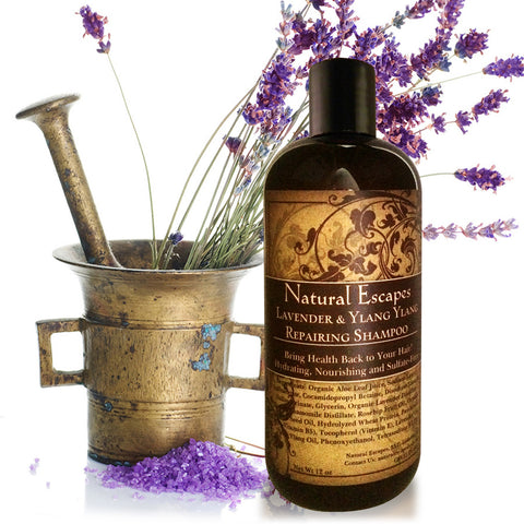 Lavender & Ylang Ylang Repairing Shampoo | Sulfate-Free Shampoo for Dry Hair, Color-Treated Hair, Hair Growth & More