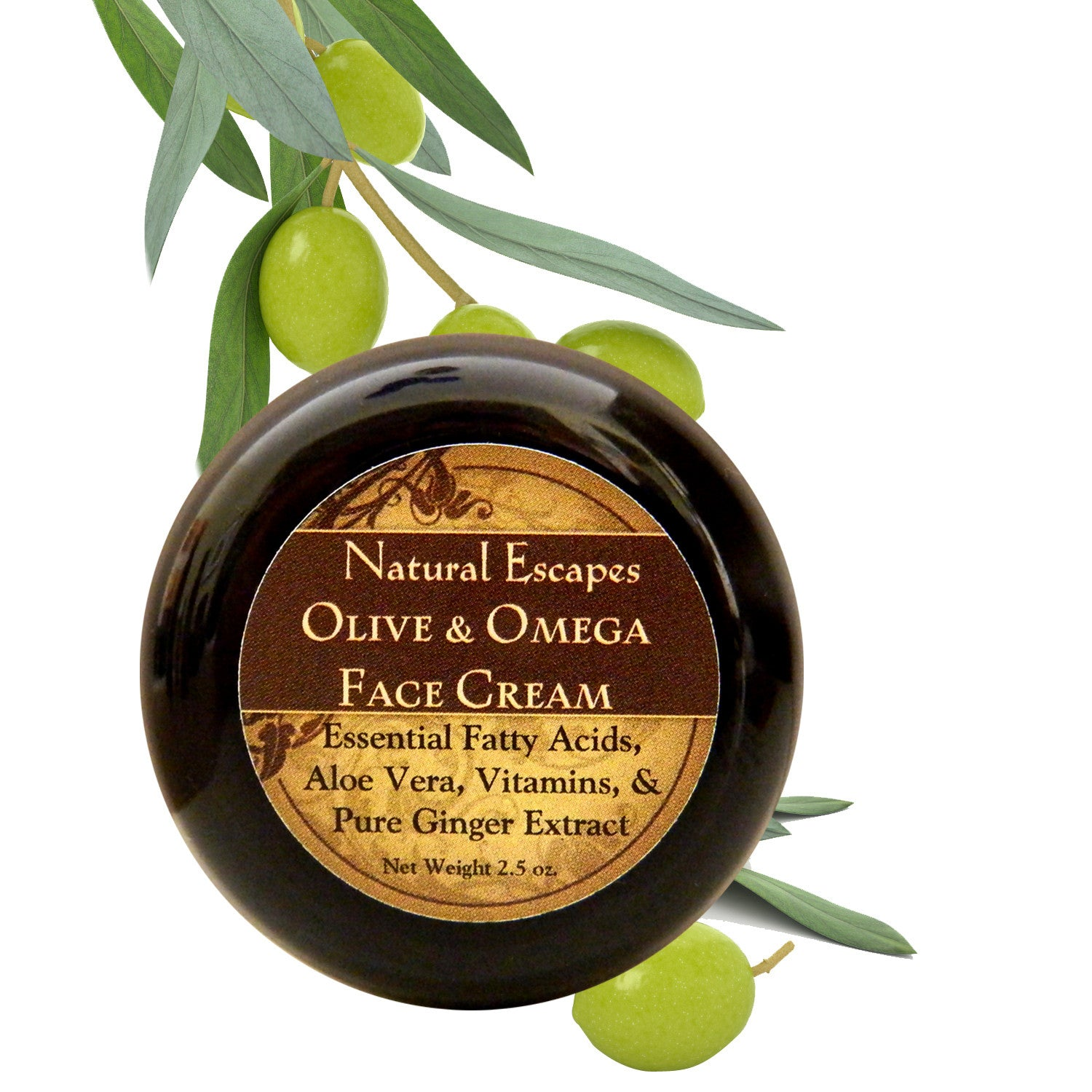 Olive & Omega Face Cream | Anti-Aging Face Cream for Extra Dry Skin, Fine Lines & Wrinkles, Age Spots & More
