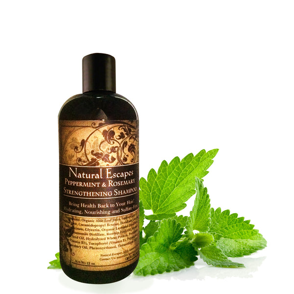 Peppermint & Rosemary Strengthening Shampoo | Organic Shampoo for Hair Growth, Dry Hair & More