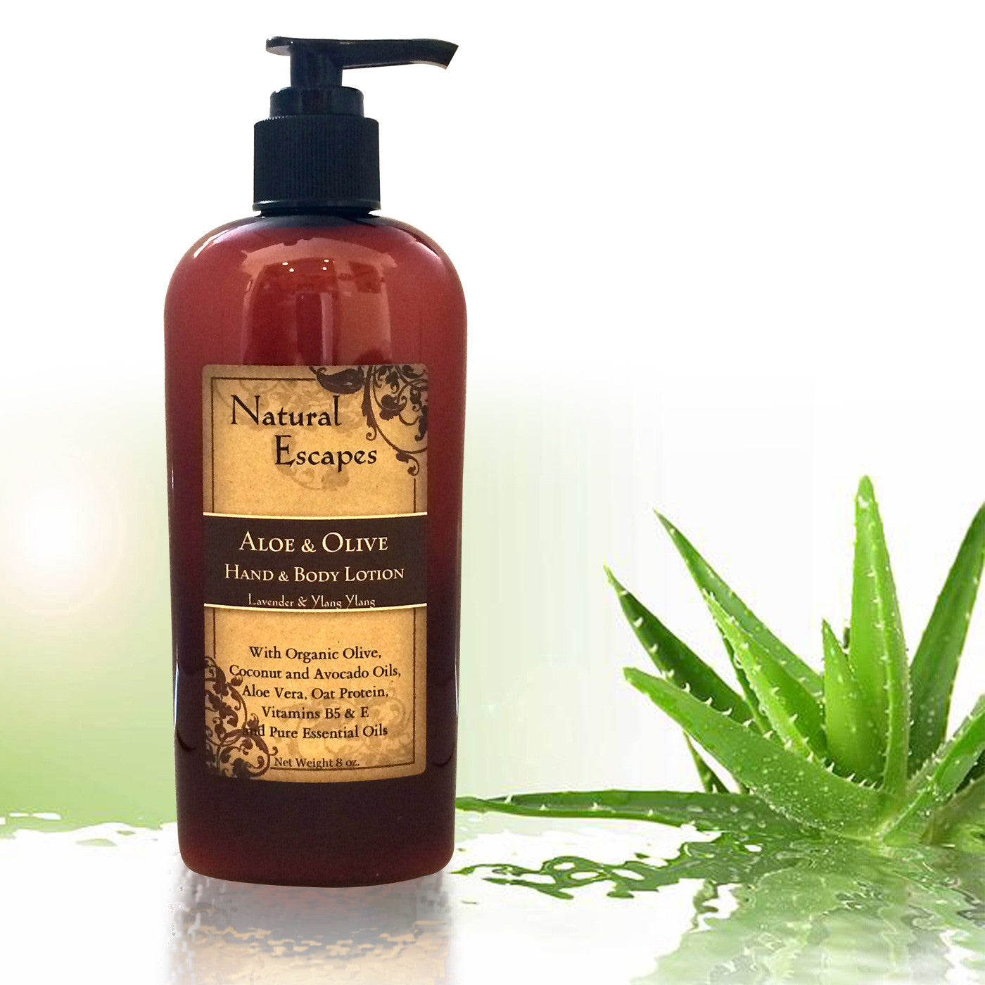 Lavender Aloe & Olive Hand & Body Lotion