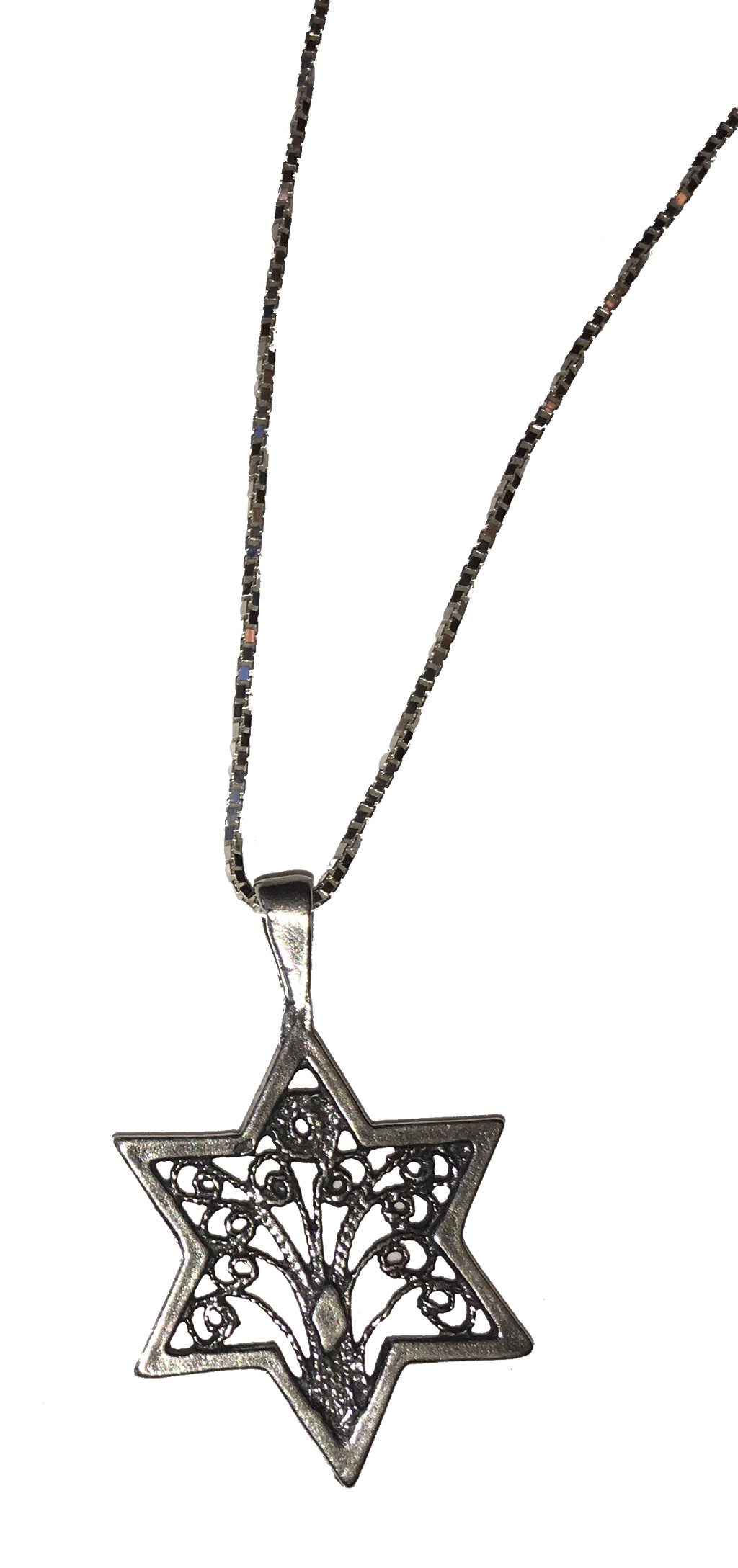 Star of David / Tree of Life Necklace