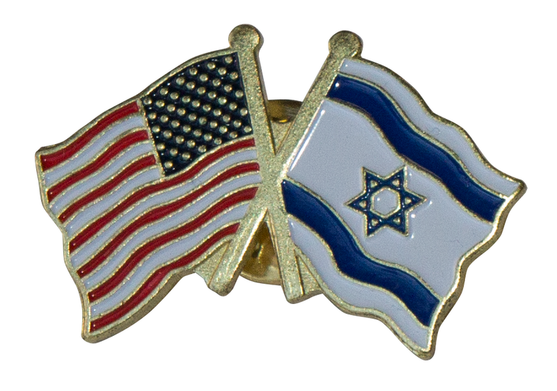 USA & Israel Pin