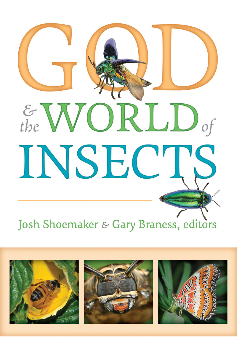 God & the World of Insects