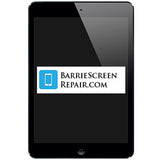 Apple iPad Mini Screen Repair Service (Black/White)