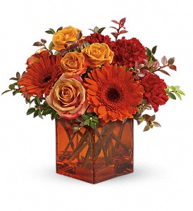 Teleflora's Sunrise Sunset (T47-1)