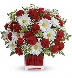 Red and White Delight by Teleflora (TEV27-2)