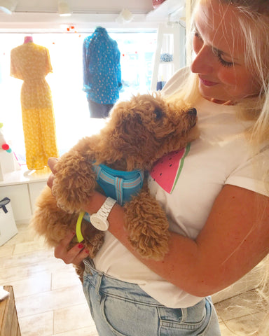Marita Welcomes a dog in store