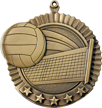 "Volleyball Star Medal, 2 3/4"" in gold"