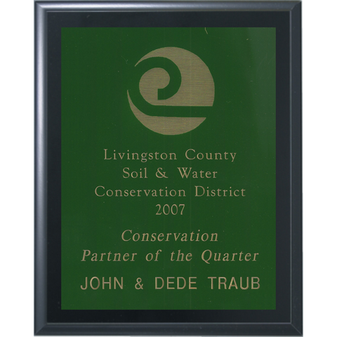Black Matte Finish Plaque with Green Brass Plate