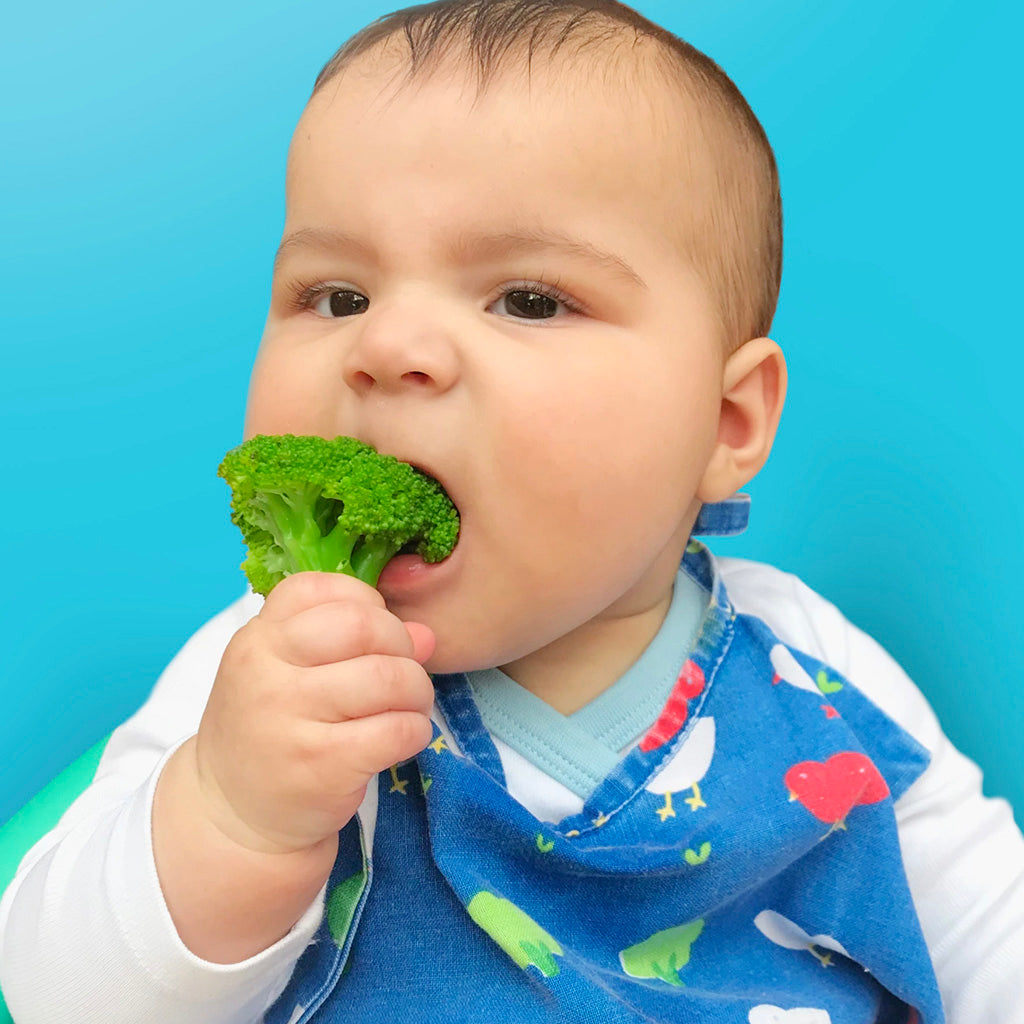 Everything You Need To Know About Introducing The First Food To Your Little One