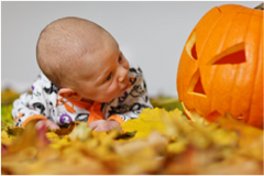 Halloween Child looking at a Pumpkin