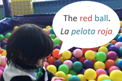 Kids' Candor Blog: Developing noun phrases in Spanish and English