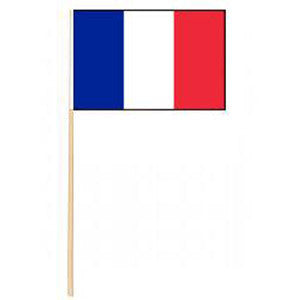 Mini French Flag