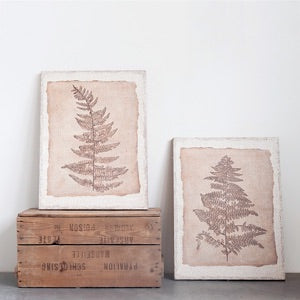 Fern Wall Art