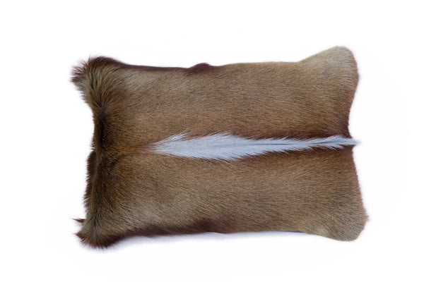 Grey Springbok Pillow