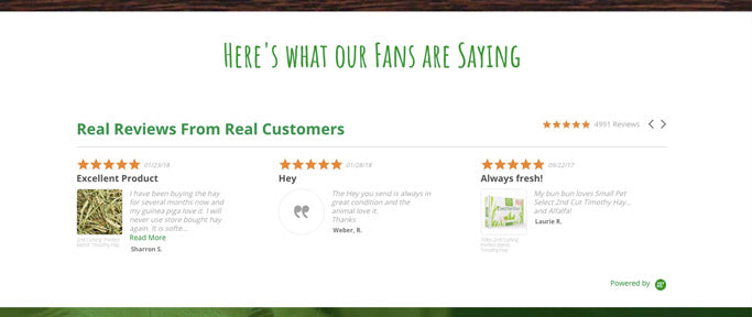 Customer reviews on Shopify using YOTPO