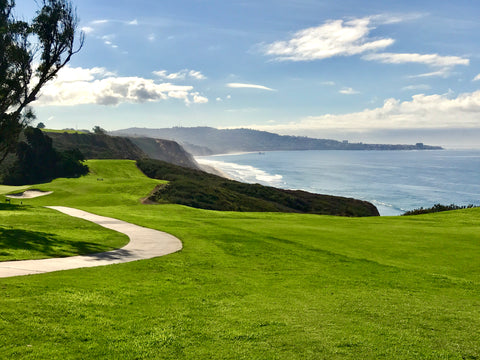 Torrey Pines Hole 16 by 18 GREENS