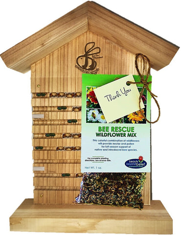 Native Bee Observation House and Wildflower Seed Bundle
