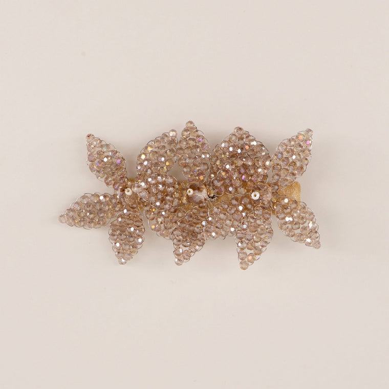 The Fairies In The Mist Crystal Girls Hair Clip Hair Slide Sienna Likes To Party