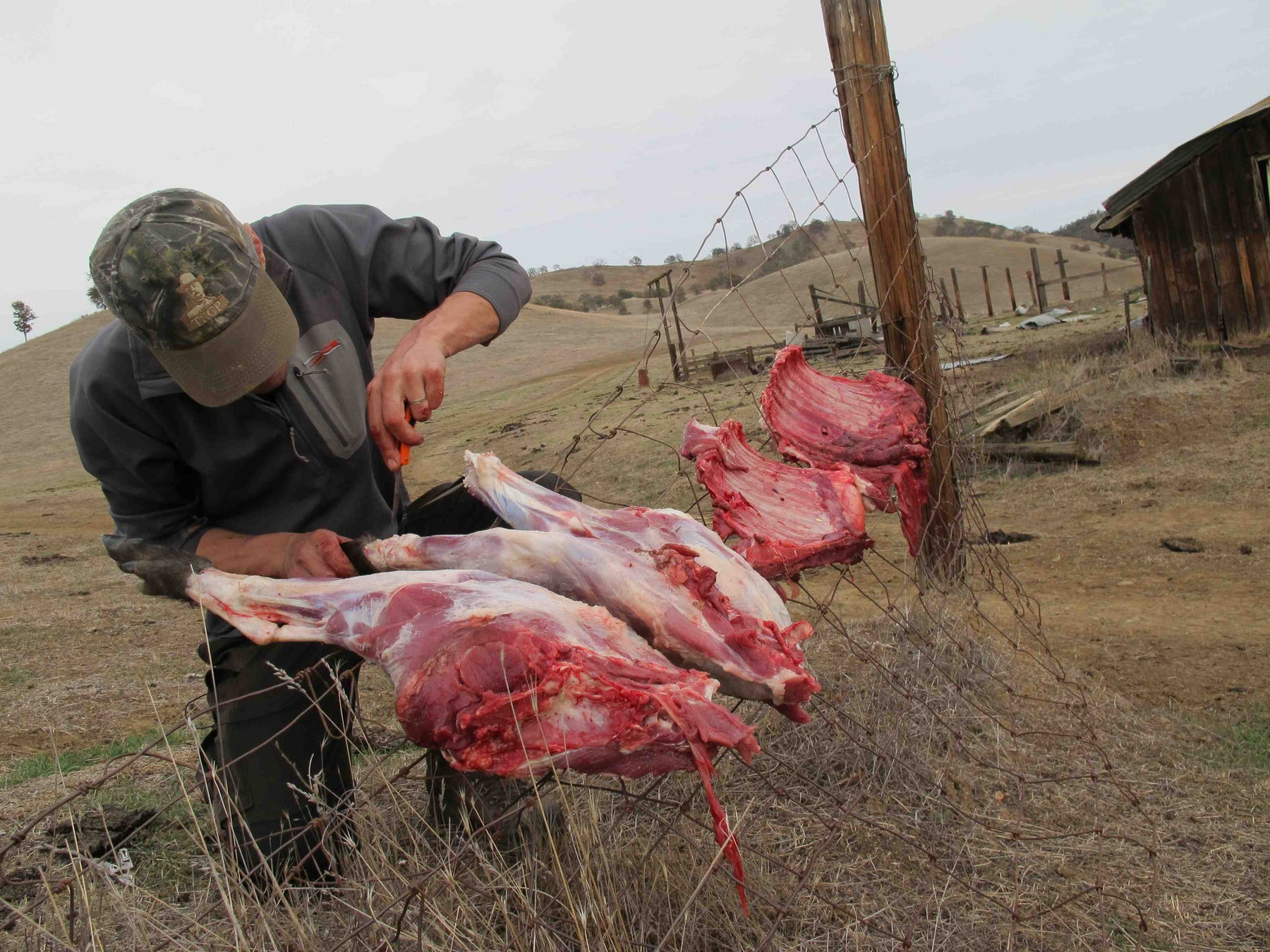 Backcountry Meat Care with Steven Rinella