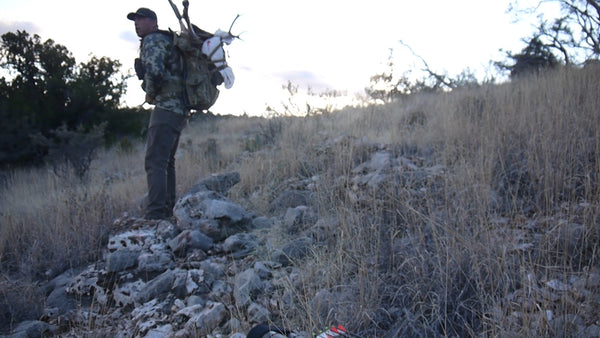 Packing out a Mule Deer!