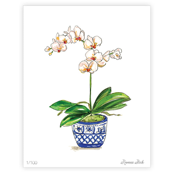 "RosanneBeck Collections - 8"" x 10"" Blue Orchid Watercolor Art Print"