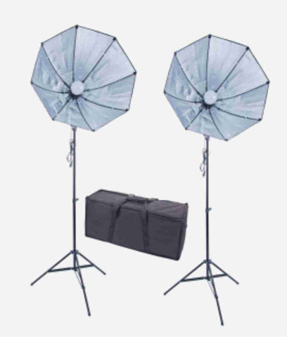 28 inch Octag 2 Softbox Kit- 2 LEDs w/6 ft Stands