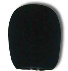 Windscreen for SPL-8810 - AMERICAN RECORDER TECHNOLOGIES, INC.