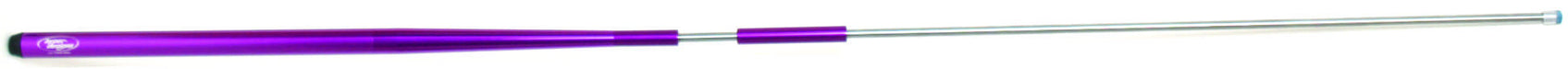 LINEAR Q - PURPLE - AMERICAN RECORDER TECHNOLOGIES, INC.