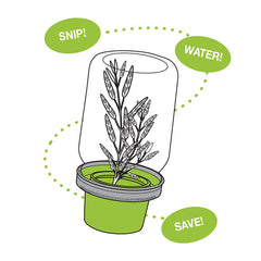 Jarware Herb Saver - Mason Jar Accessory - Illustration