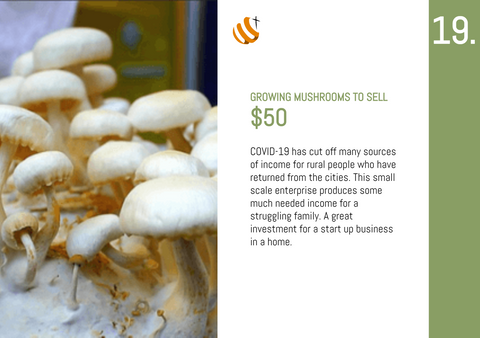 CC20 - #19 - Growing Mushrooms to Sell