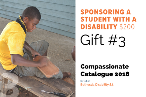 CC18 - #03 - Sponsoring a Student with a Disability