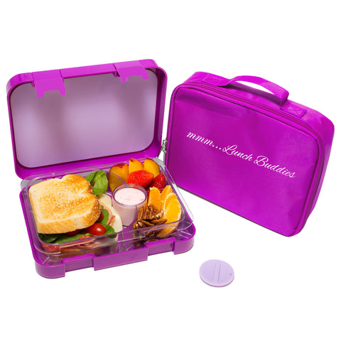 Lunch Buddies Purple- 4 compartments bento lunch box ( NEW )