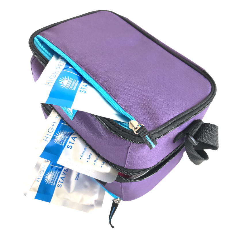 Arctic Zone Dual Compartment Lunch Pack ~ Logan ( NEW)