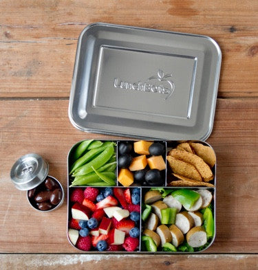 LunchBots LARGE~  CINCO Stainless Steel